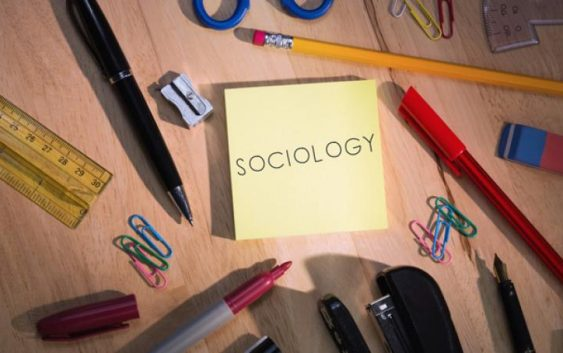 Phd thesis of sociology