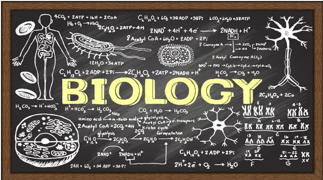 Biology Writing Help