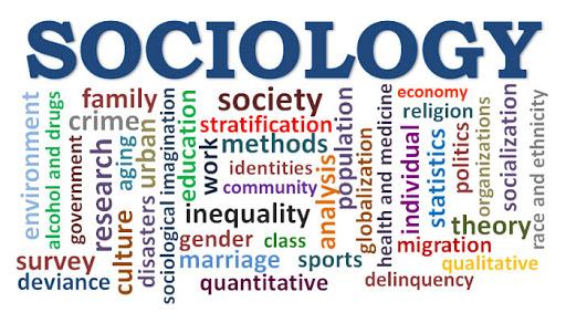 Sociology Essay Help