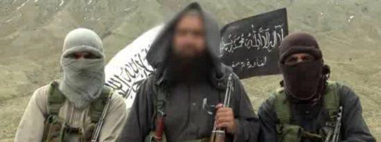 US Failure in Bringing Democracy to Iraq - Salafi-Jihadist Case Study