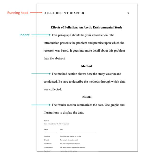 APA Format Professional Paper Body