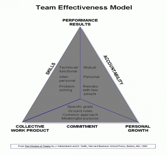 Understanding and Managing Teams – Theories and Their Application