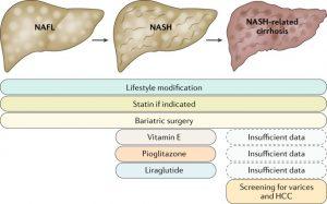 Nonalcoholic Steatohepatitis (NASH)