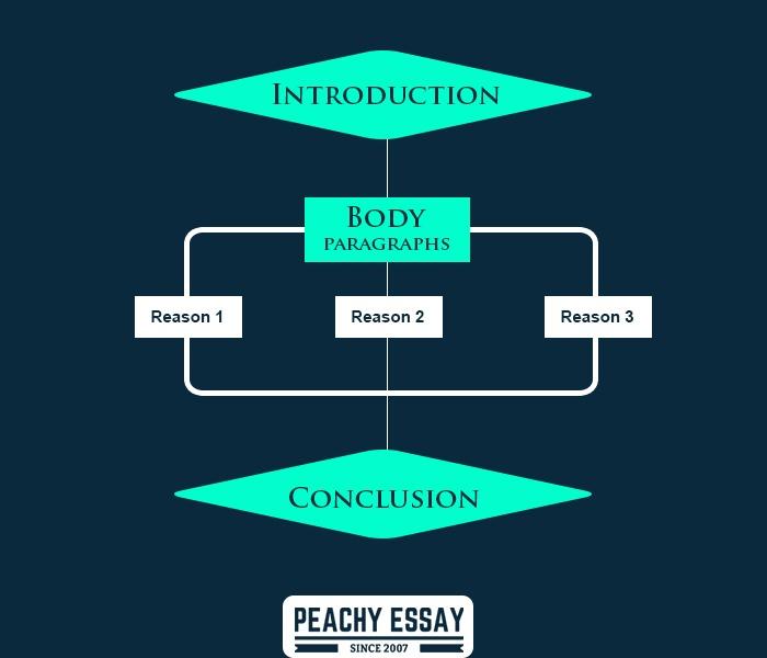 Evalution essay outline