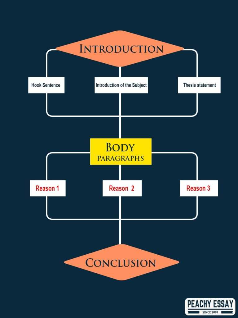 Evaluation Essay Structure