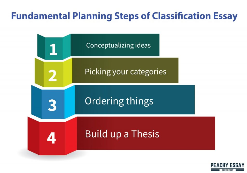 steps of classification essay