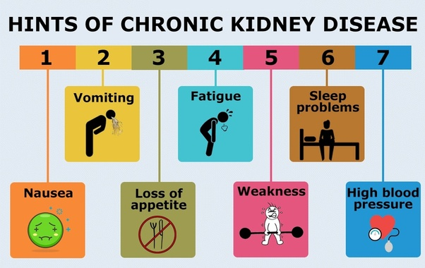 What are the signs of renal failure