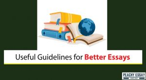 Guidelines for Better Essays
